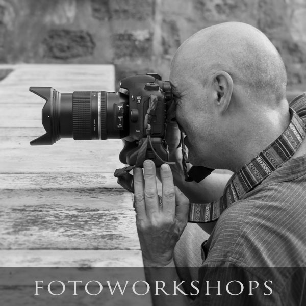 Fotoworkshops, Fotokurse, Coachings, Bildbearbeitung